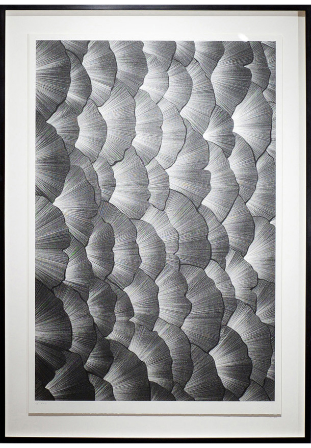 Leaves of Light print